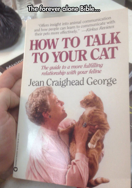 cool-cat-book-talk-old-woman-cover