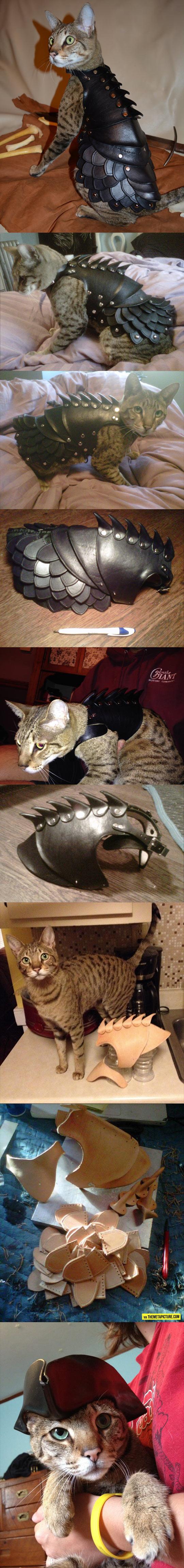 Kitty Leather Armor