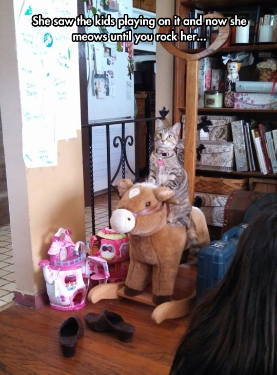 cool-cat-rocking-toy-horse