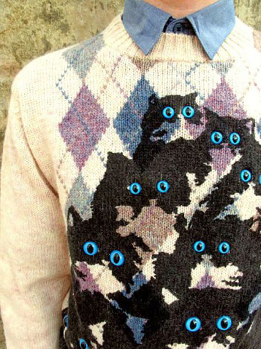 cool-cat-sweater-blue-eyes