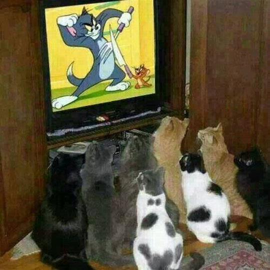 They Are Hooked