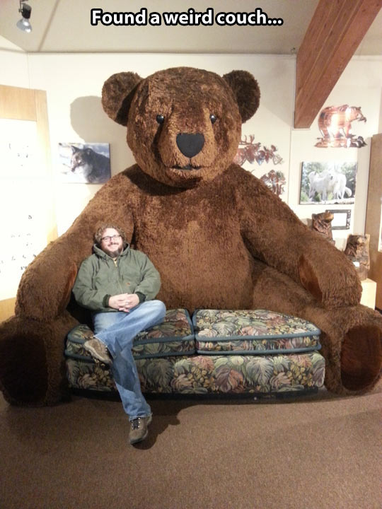 cool-couch-bear-shape-giant