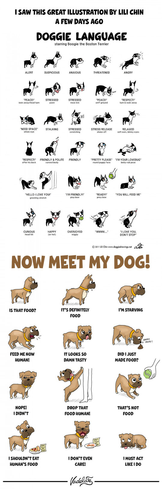 cool-dog-act-cartoon-eating