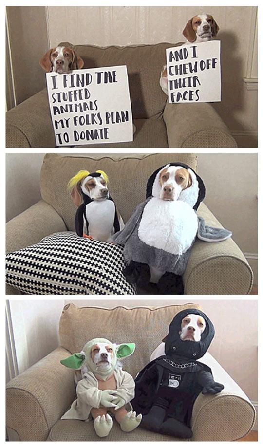 Evil Partners In Crime