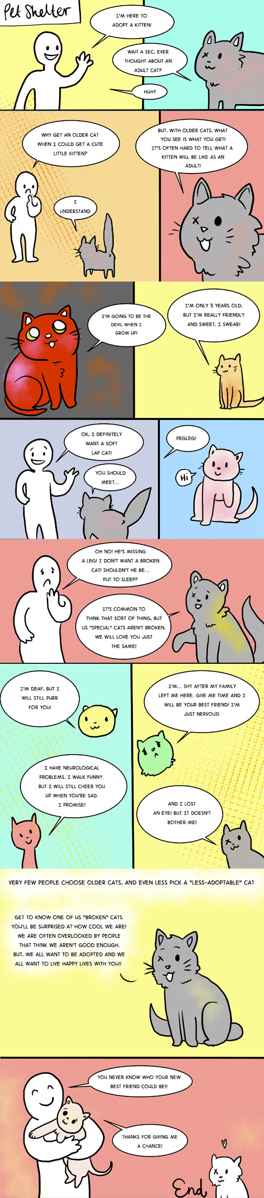 Something To Consider About Pet Shelters