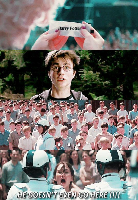 Harry Potter Visits District 12