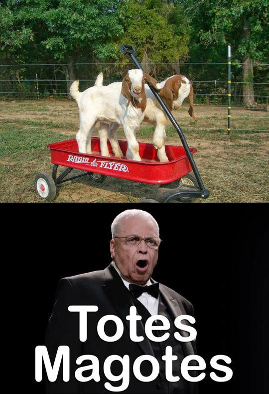 cool-goats-Radio-Flyer-James-Earl-Jones