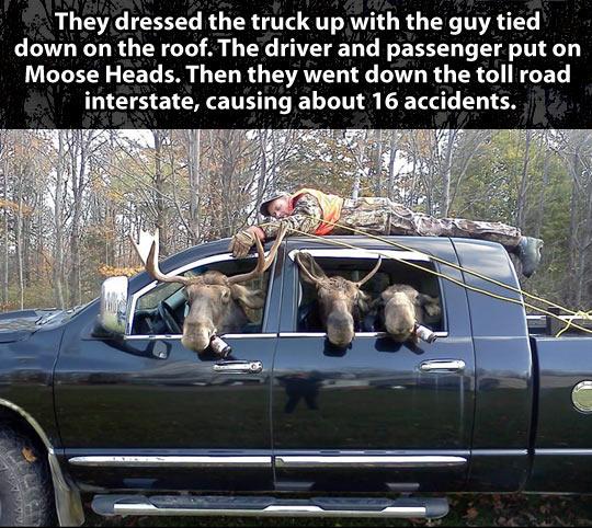 cool-hunter-moose-truck-forest-prank