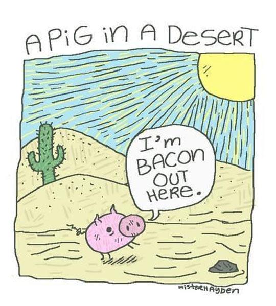 cool-pig-desert-bacon-sun-comic