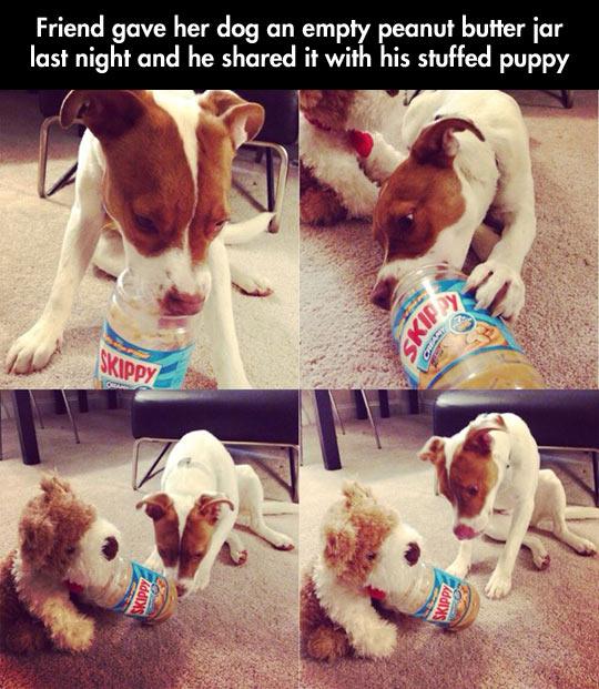 cool-puppy-stuffed-dog-peanut-butter
