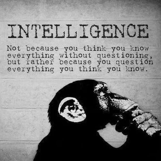 The Truth About Intelligence