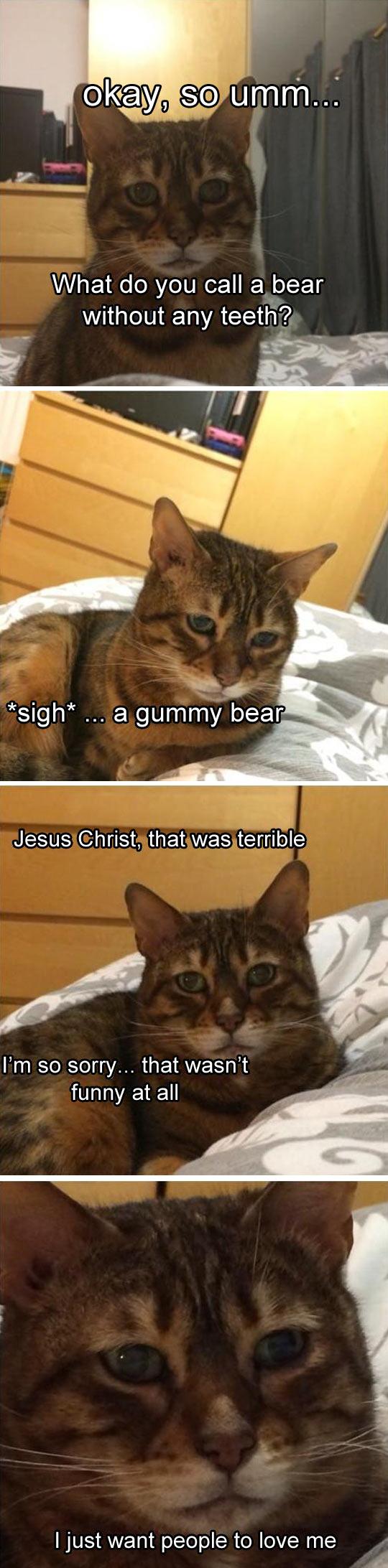 Sad Kitty Tells A Joke