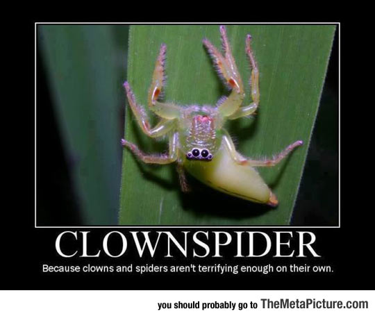 cool-scary-clown-spider-terrifying