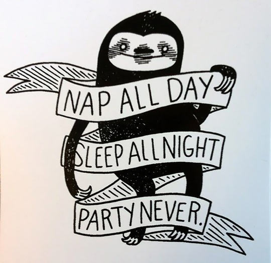 cool-sloth-nap-quote-sleeping