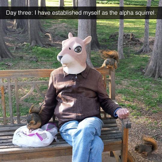 cool-squirrel-mask-park-costume