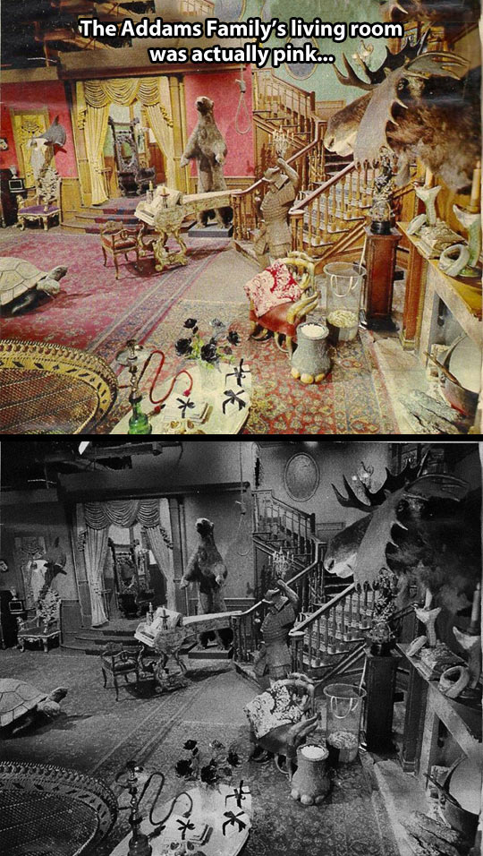 funny-Addams-Family-living-room-real