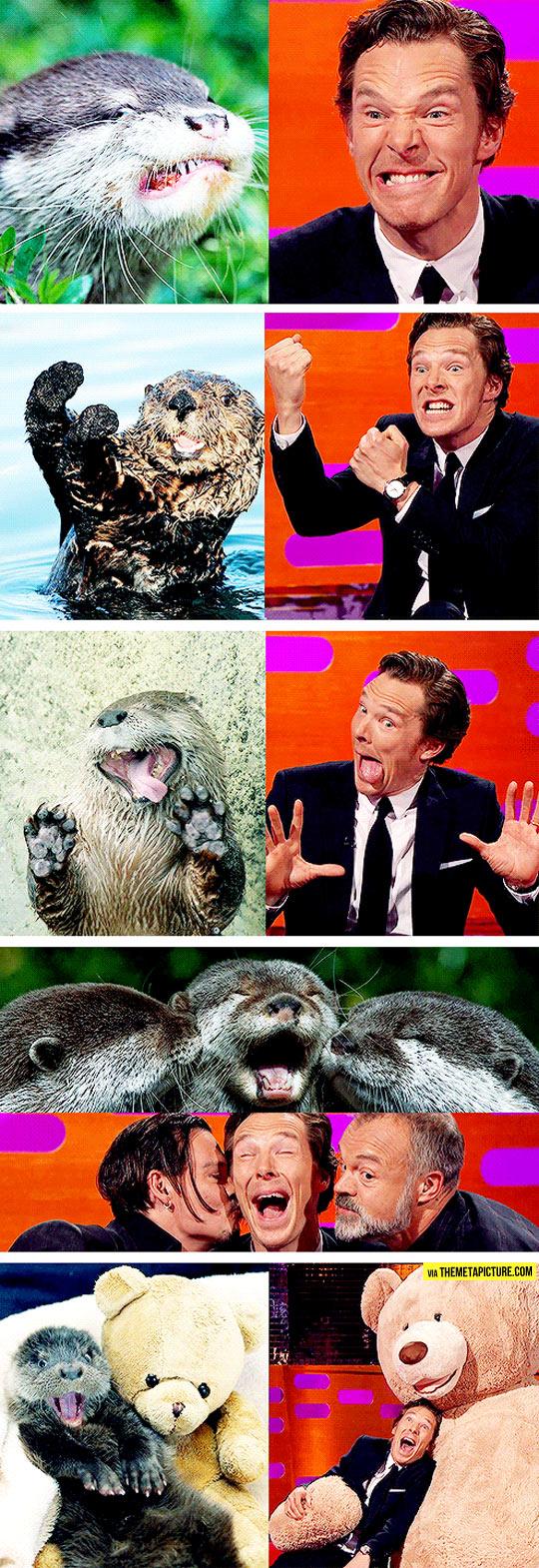 Benedict Cumberbatch Reenacts Otter Memes