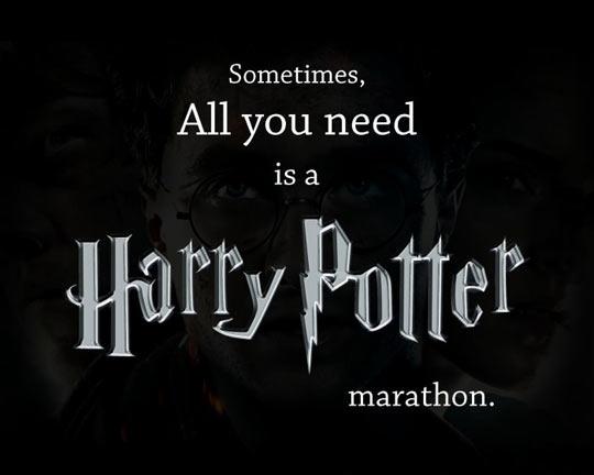 funny-Harry-Potter-marathon-quote