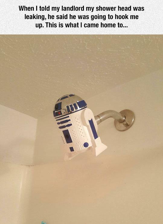 Broken Shower Gets The Best Fix