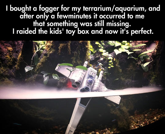 funny-aquarium-fogger-needing-ship