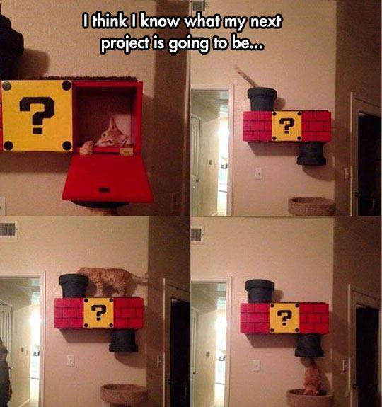 funny-cat-playing-block-Mario-wall