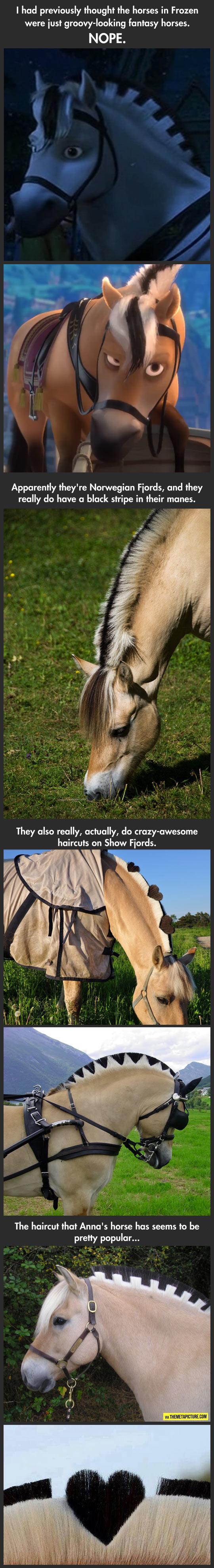 funny-horses-Frozen-cute-haircut