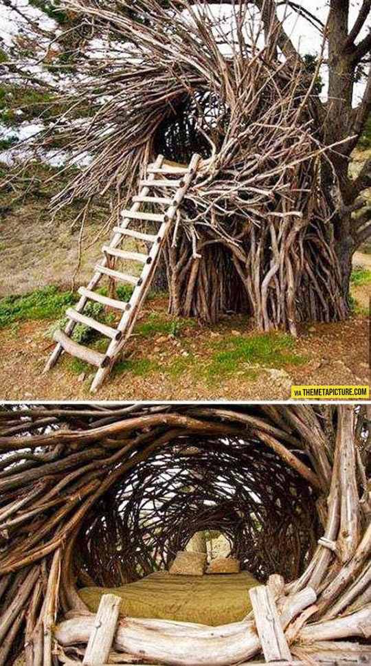 funny-nest-stairs-bed-inside