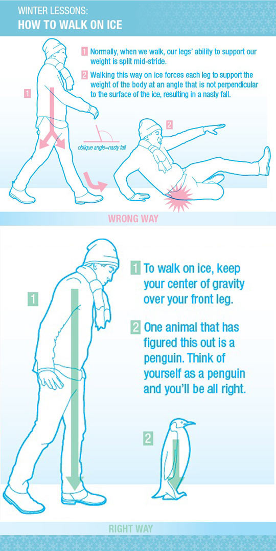 funny-walk-ice-instructions-guide-snow