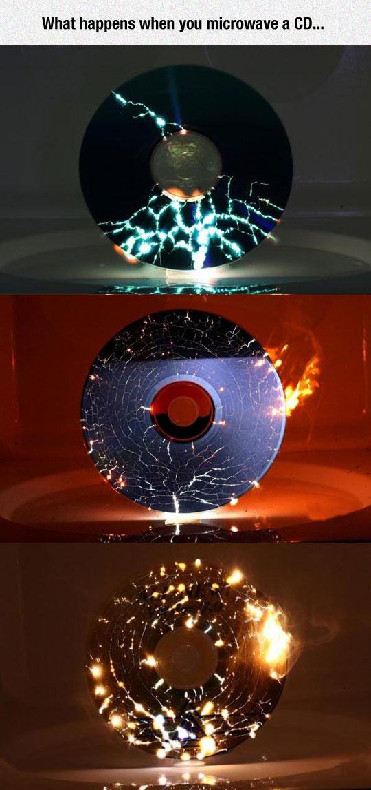 Microwaving A CD