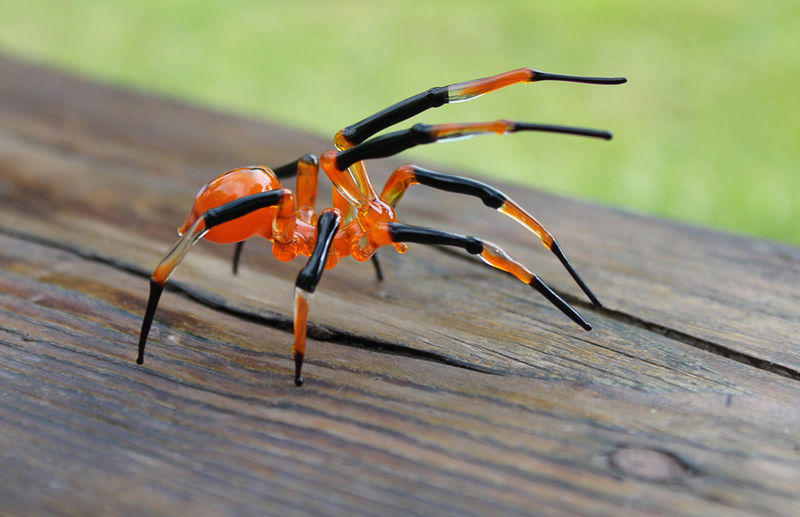 Handmade Blown Glass Spider