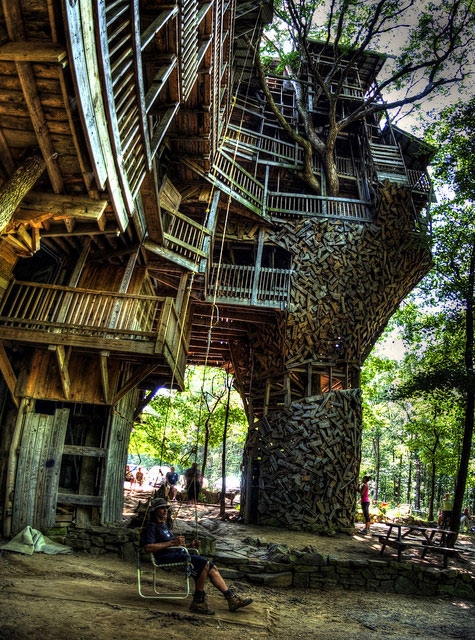 Magnificent tree house