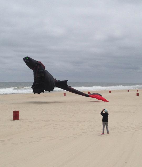 Toothless Kite On The Beach