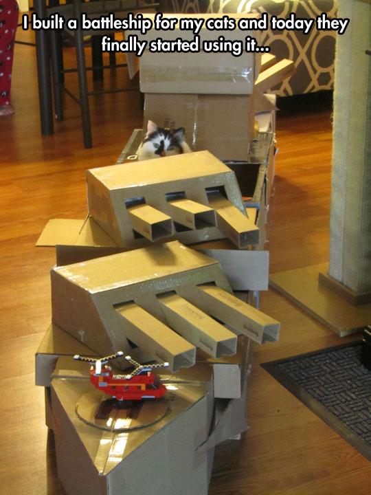 battleship-cat-box-cannons