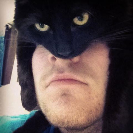 cool-Batman-cat-mask-man