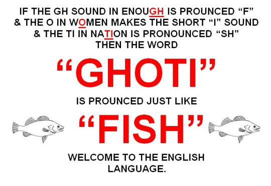 The English Language, Everybody