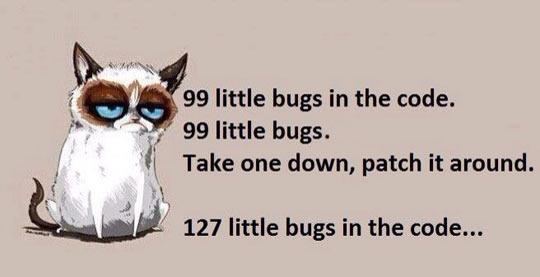 cool-Grumpy-cat-programmer-code-bugs