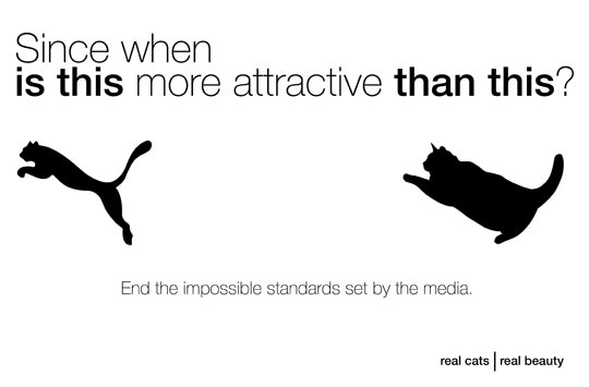 cool-Puma-fat-cat-impossible-standards