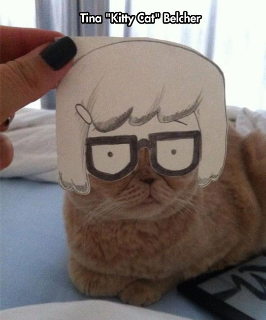 Tina Cat