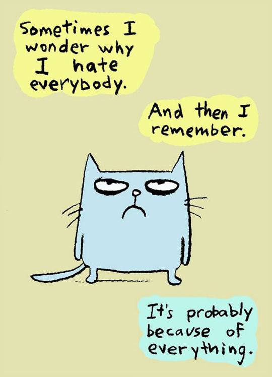 cool-cartoon-cat-hate-everything