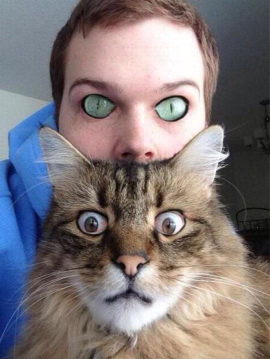 cool-cat-owner-eyes-swap