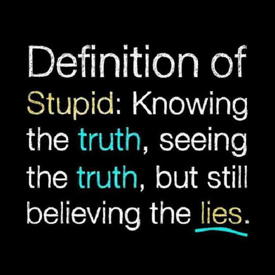 cool-definition-stupid-truth-lies