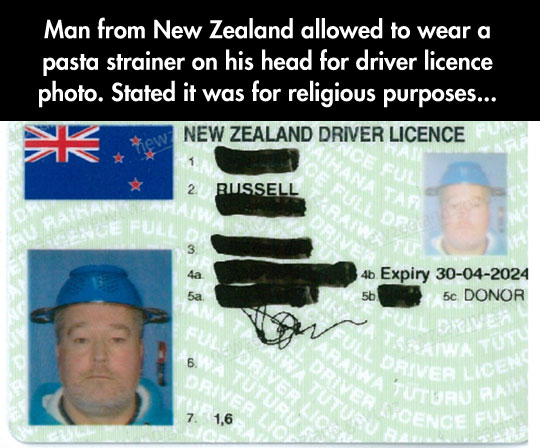 cool-drivers-license-pasta-strainer-head