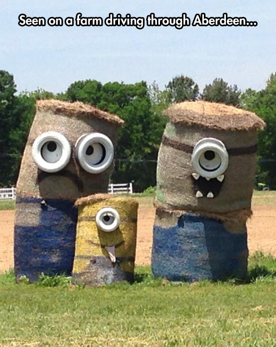 cool-farm-Minions-eyes-mouth