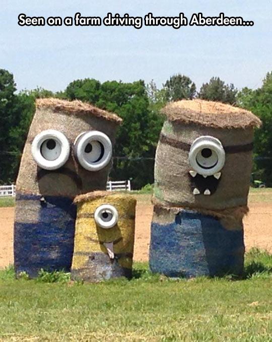 When Farmers Get Creative