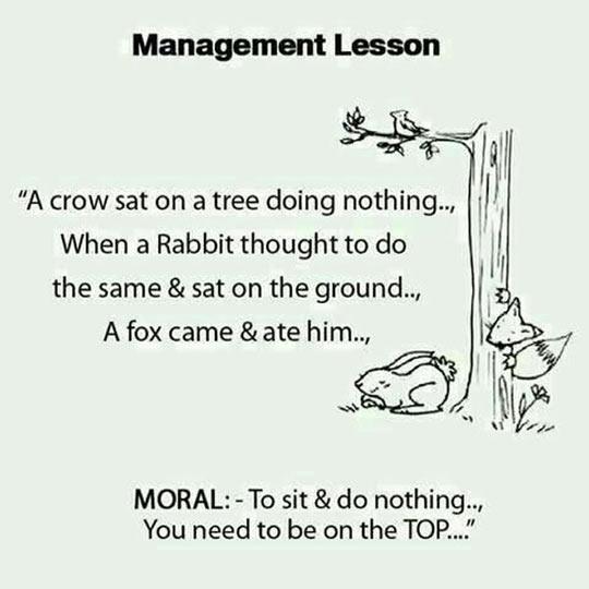 Helpful Management Lesson