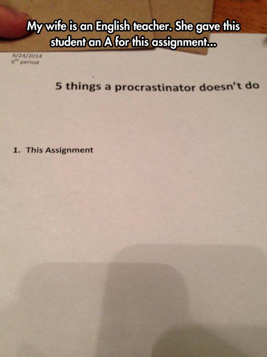 Procrastinator Conduct