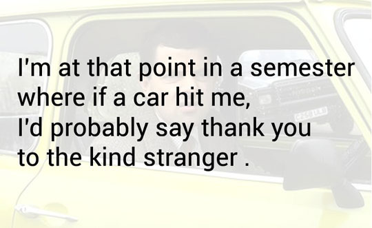 cool-semester-car-hit-quote