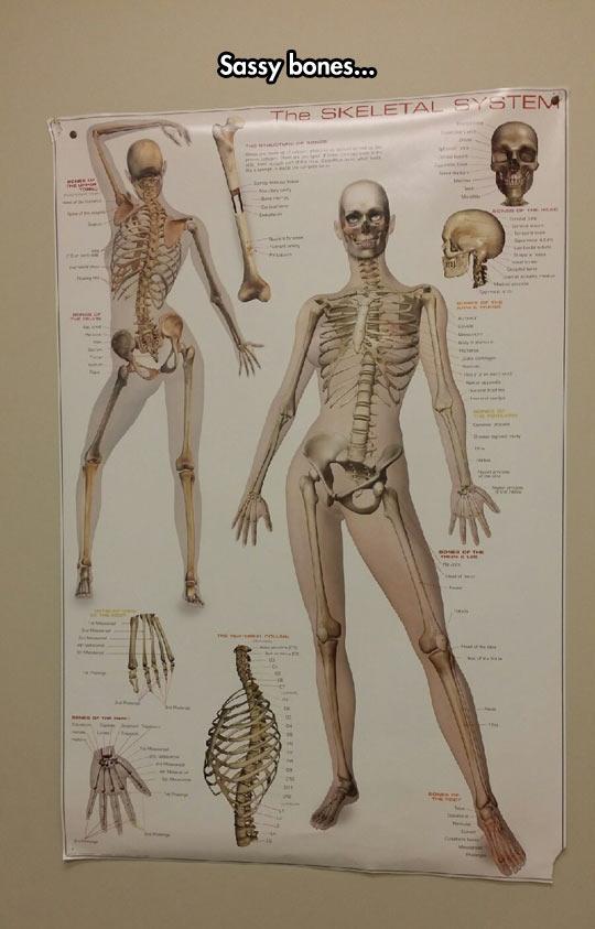 cool-skeletal-system-girl-posing