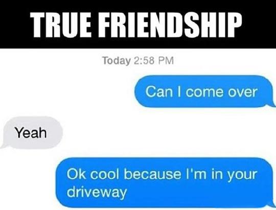 cool-true-friendship-come-over