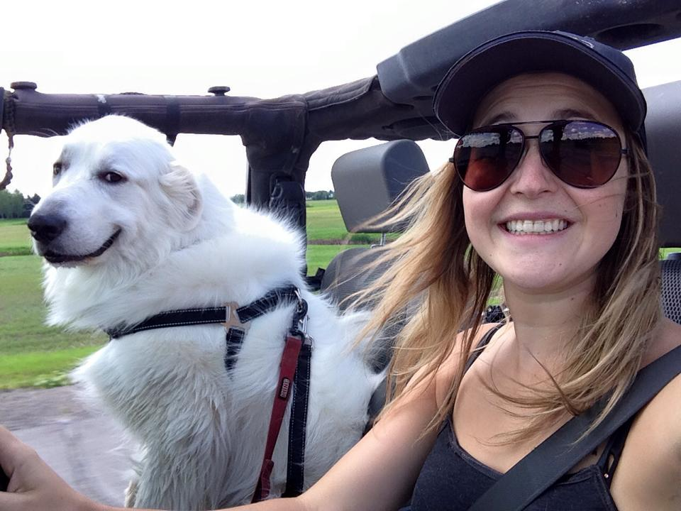 dog is much happier when it isn't raining.